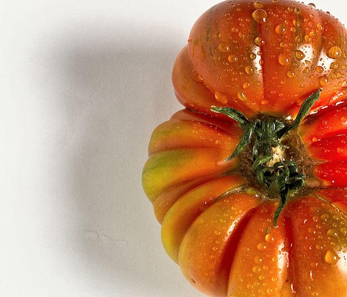 Gaudencio Garcinuño Tomate sobre fondo blanco