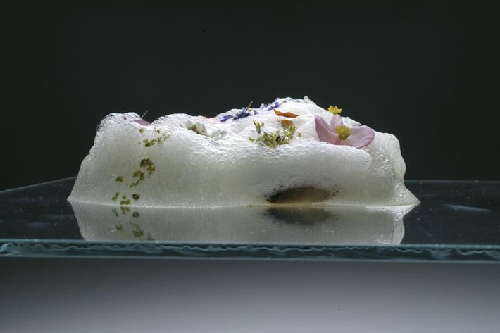 7 flores comestibles con el morro fino for Ferran adria platos