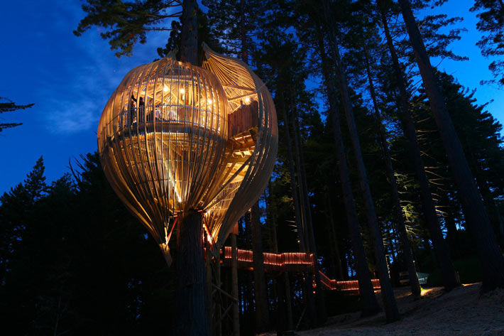 Restaurante Redwood TreeHouse 2