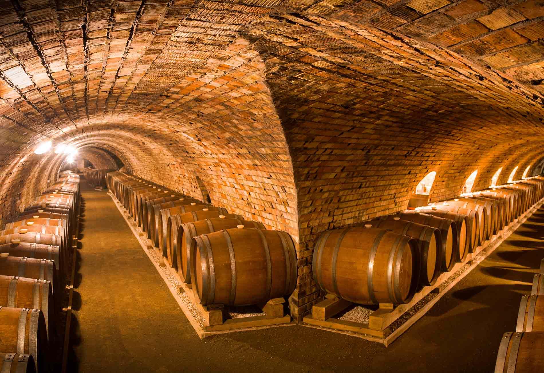 Cementerios del vino, 7 bodegas únicas donde descansan tesoros