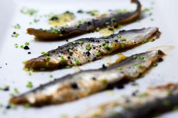 la lata de sardinas portada