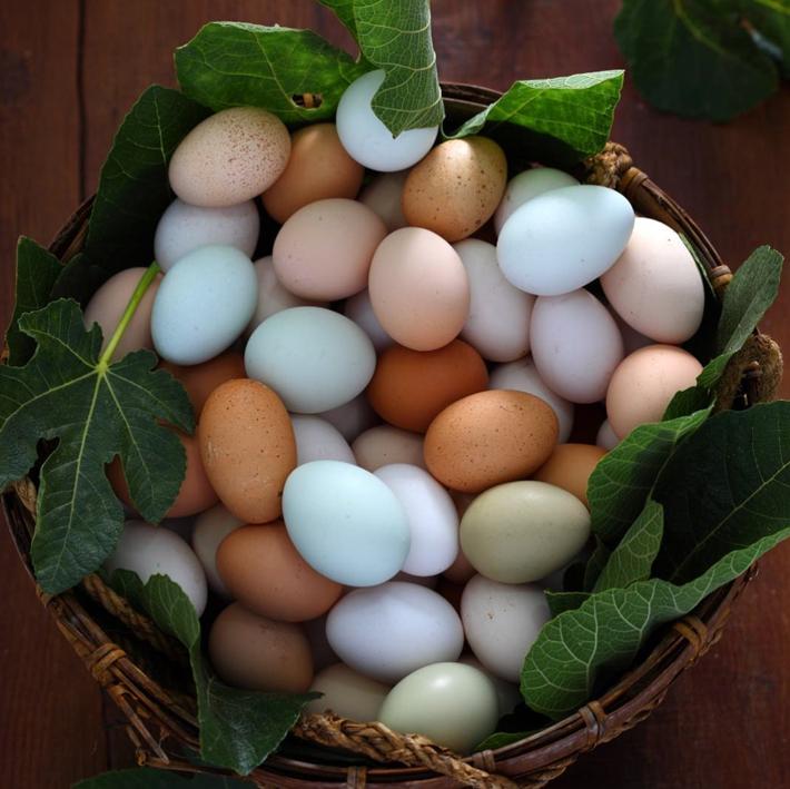 Productos artesanos Huevos Cobardes y Gallinas