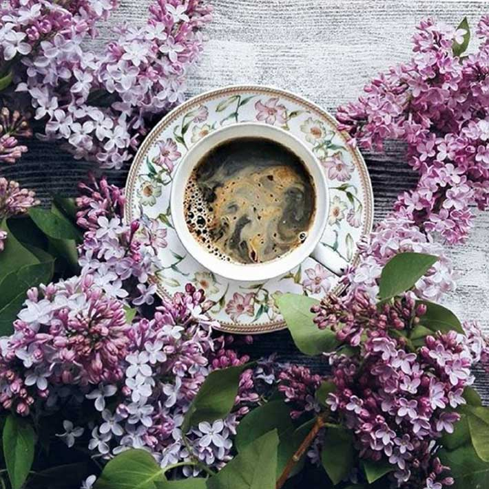 perfiles creativos instagram coffee-and-season