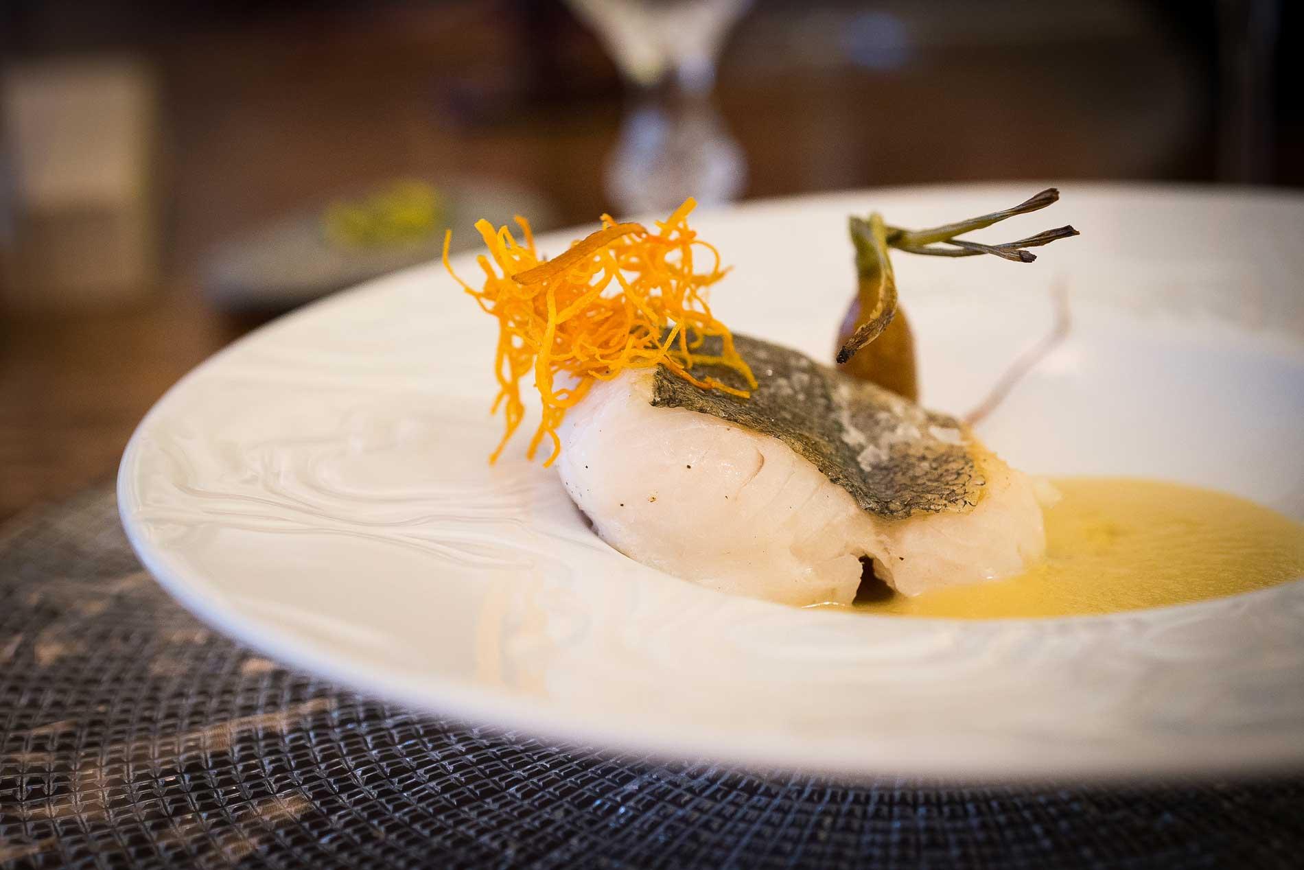 Merluza Austral de Chile, pureza, versatilidad y saborazo