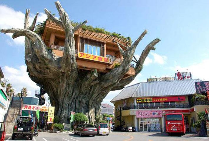 Los restaurantes mas raros del mundo Nabo Harbor Dinner