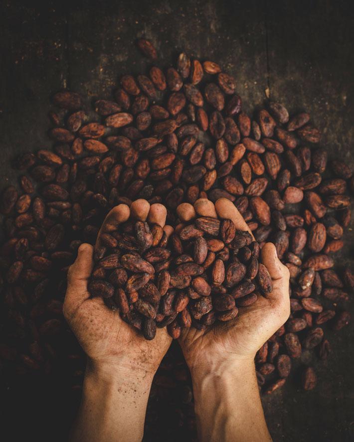 alimentos antioxidantes granos de cacao