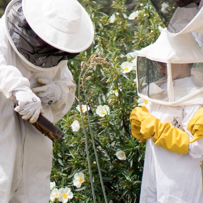 Agenda gastronomica Madrid Ruralit apicultor por un dia