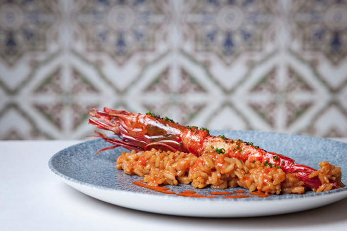 Agenda gastronomica Madrid El Zorzal