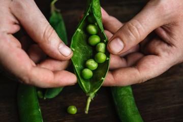 Por que comer legumbres portada