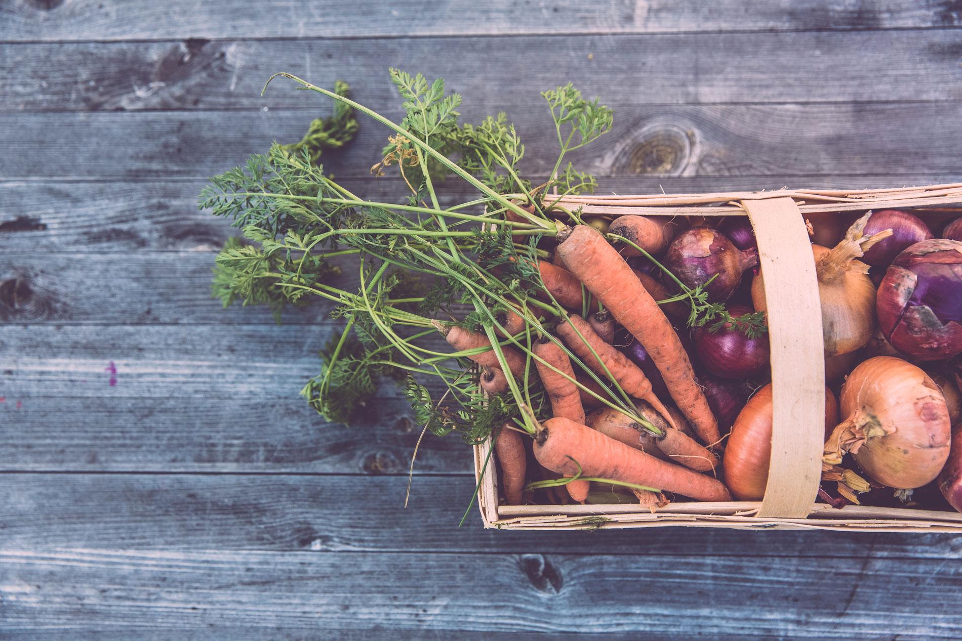 6 consejos (de una experta) para una compra más sostenible