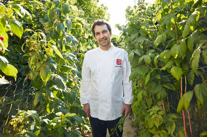 Libros de recetas para los mejores chefs Javier Olleros