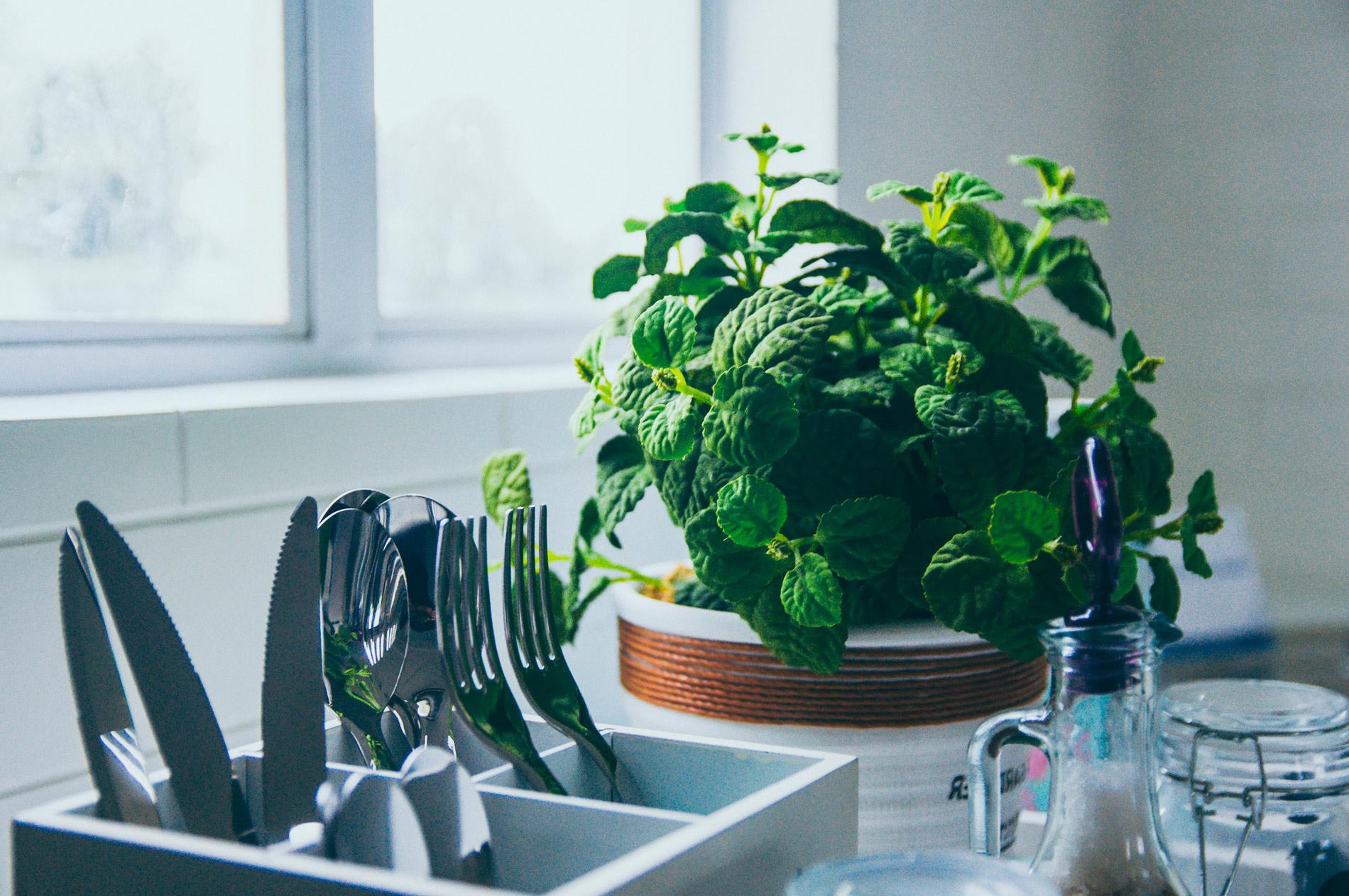 15 utensilios imprescindibles si quieres una cocina sostenible