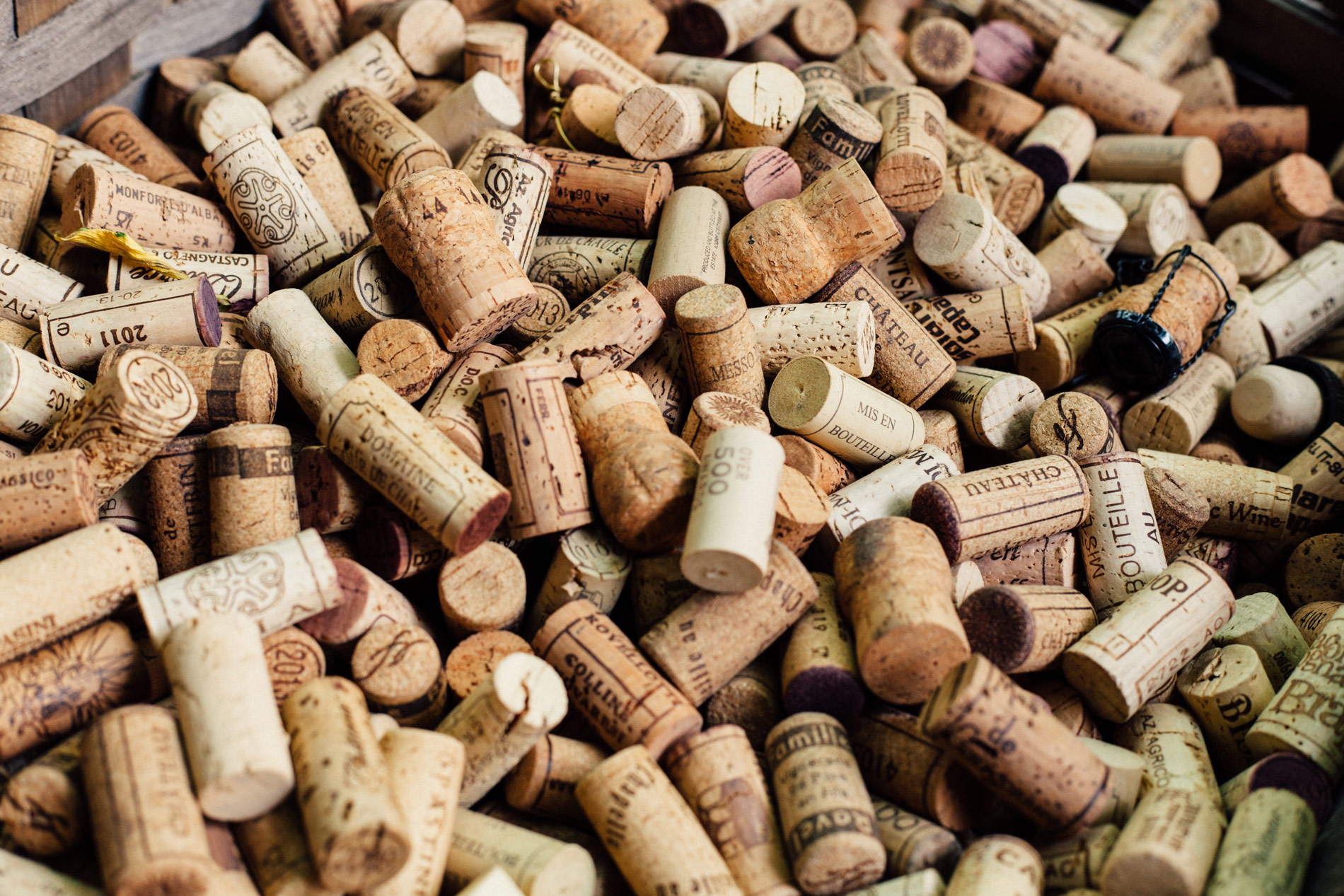 Los 15 mejores vinos de este insufrible 2020